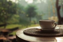Aprende a saborear el café como un catador profesional