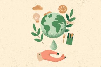 startups sostenibles 2020