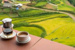 Café Mundo Vietnam