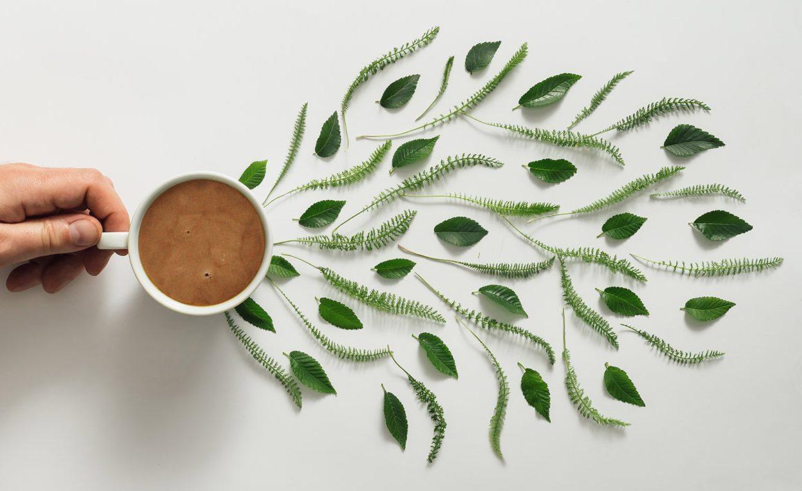 Cómo usar el café para mejorar el proceso creativo