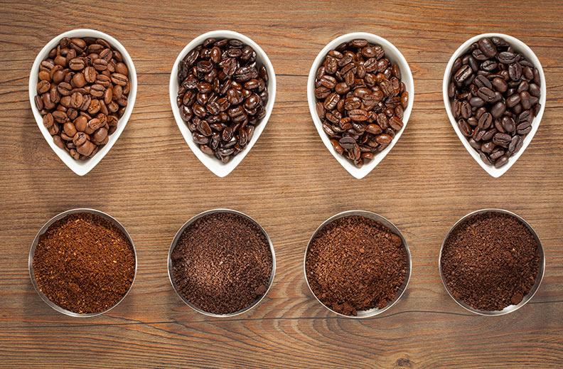 hazte experto café especies