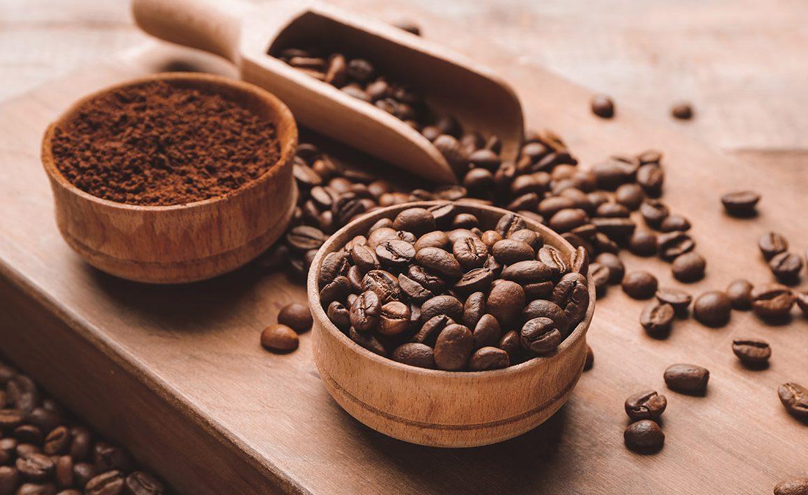 Hazte un Experto en Café: Las especies de café