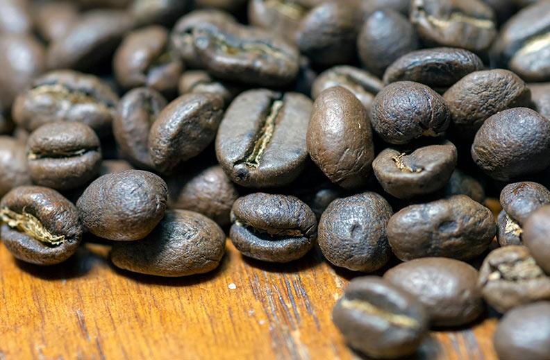 hazte experto café especies 2