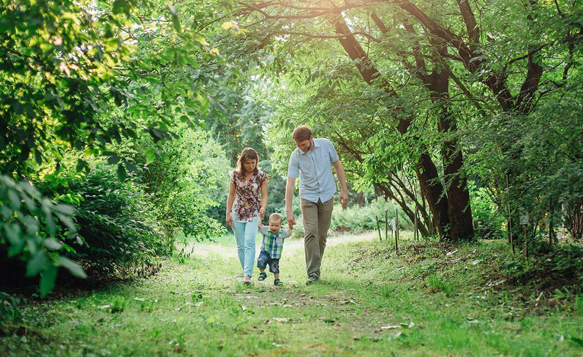 Celebra el Día Mundial de la Educación Ambiental con tus hijos