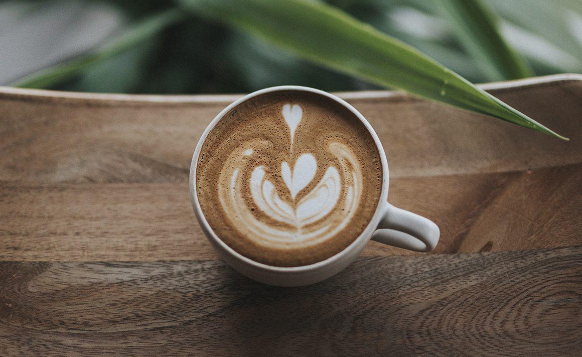 Hazte un Experto en Café: La selección